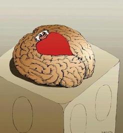 Sprawy sercowe mózgu | Psychologia | Scoop.it