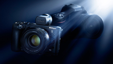 From DSLR to mirrorless... and back again | Nikon Rumors