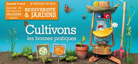 Biodiversité : Les Niortais et leur biodiver-cité   Les colocs du jardin   Scoop.it