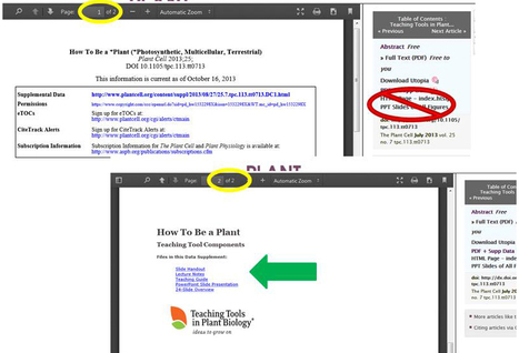 Having trouble downloading Teaching Tools files you should be able to access? Here's help. | Bioanalyytikko | Scoop.it