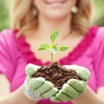 Onboarding and Talent Management: It's a Lot Like Spring Gardening | Attraction.Resourcing.Retention | Scoop.it
