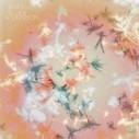 "[VIDEO] Bibio - ""You"" - gwendalperrin.net | Musical Freedom | Scoop.it"