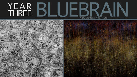 Bluebrain | Year Three | leapmind | Scoop.it