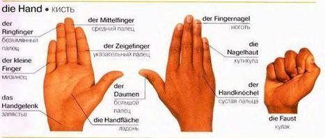Взять в свои руки на немецком