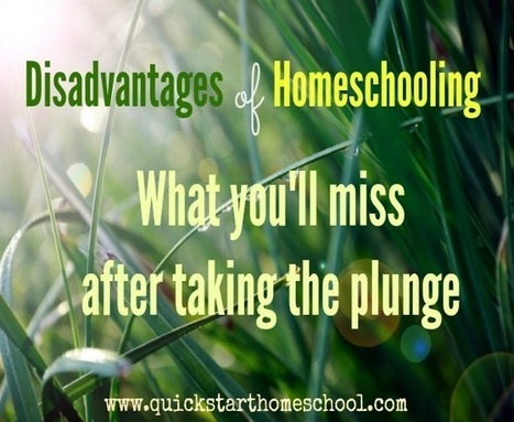 Homeschoolers miss out on real life experiences | Quick Start Homeschool | Spanish for Homeschooling | Scoop.it