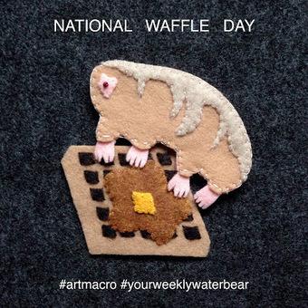 art macro: your weekly water bear: national waffle day | Tardigrades | Scoop.it