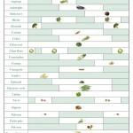 Le calendrier des légumes de saison, pour cuisiner plus sain et moins cher ! | Naturopathie et santé naturelle | Scoop.it