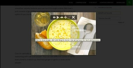 4 WordPress Plugins Award Winning Food Bloggers Use - Business 2 Community (blog) | wordpress | Scoop.it