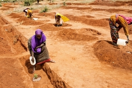 Africa's economy grows, but many stomachs are empty | Africa Renewal Online | Africa | Scoop.it