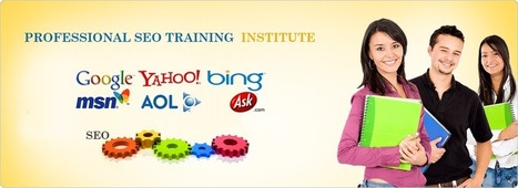 SMO Training Institute | SMO Training Institute | Scoop.it