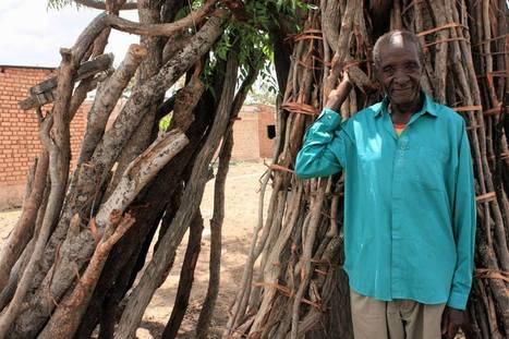 Poacher turned gamekeeper tells of Tanzania's elephant battle | Wildlife Trafficking: Who Does it? Allows it? | Scoop.it