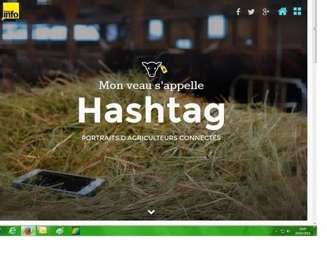 Mon veau s'appelle Hastag : reportage hébergé sur France Info | Communication Agroalimentaire | Scoop.it