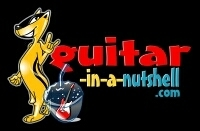 """Budding Guitarists Click Onto the Easy Way to Learn """"Guitar in a Nutshell"""" 