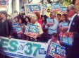 Ten Grassroots Lessons From Monsanto's Swift-Boating of the Prop37/Label GMO Campaign | YOUR FOOD, YOUR HEALTH: Latest on BiotechFood, GMOs, Pesticides, Chemicals, CAFOs, Industrial Food | Scoop.it