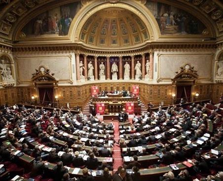 Yanous ! Points de vue informatique et handicap : Le Sénat veut enterrer l'accessibilité du web ! | Handicap_numérique_Europe | Scoop.it