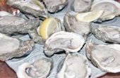 He is a bold man who tries to grow oysters in Alaska | Aquaculture | Scoop.it