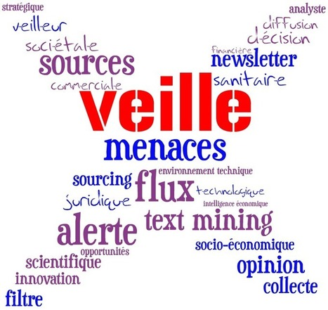 Top blogs en infocom - Partie 2a : veille / IE - PoleDocumentation | le monde des bibliothèques et des sciences de l'information | Scoop.it