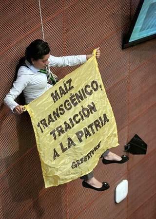 Irrumpen activistas de Greenpeace en el Senado de México | Educacion, ecologia y TIC | Scoop.it