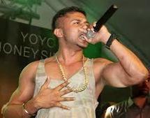 Yo Yo Honey Singh got an Accident Pics | yo yo honey singh | Scoop.it