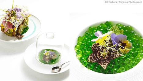 Art floral : inspiration cuisine japonaise | Nourriture japonaise en France | Scoop.it