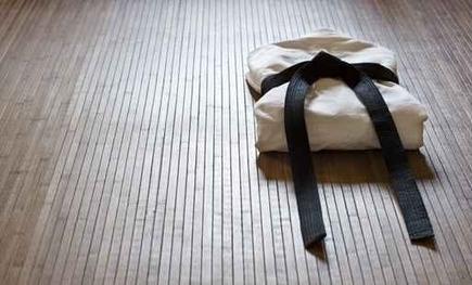 PME, battez les grands groupes grâce à la judo-stratégie | Strategie Export | Scoop.it