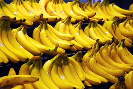 La banane, excellente pour le coeur des femmes après la ménopause : Allodocteurs.fr | Psycho-Santé | Scoop.it