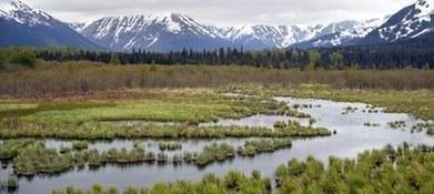 Beluister het KNAW-minisymposium over de natuurwetenschappelijke basis van klimaatverandering | KNAW-Nieuws | Scoop.it