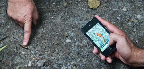Los in 't bos: met je mobiel naar buiten » Door: Jolanda Pikkaart - | Onderwijs & ICT & Social media | Scoop.it