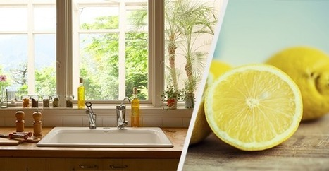 27 Non-Toxic Recipes for DIY Cleaning | Healing our planet | Scoop.it
