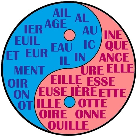 Gender in French: The Cheat Sheet - French learning article - italki | French | Scoop.it