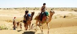 Jaipur To Sariska Tour Package | weeknd getaways | Scoop.it