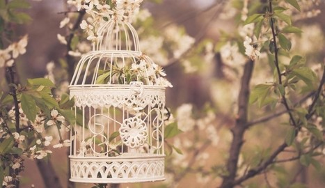 Tips For Planning A Budget Rustic Wedding | Creative cakes, cupcakes, desserts and cake ideas | Scoop.it