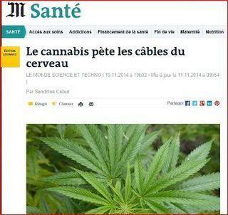 Le cannabis fait disjoncter les journalistes du Monde chargés de la titraille - Acrimed   Action Critique Médias   Médias et drogues   Scoop.it