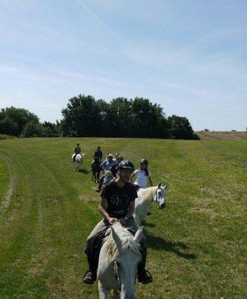 Le tour du Gers à cheval se dessine | Cheval et Nature | Scoop.it