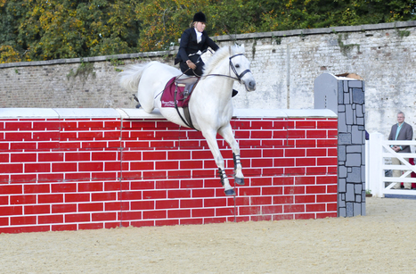 """""""Irish rider breaks world side saddle high jump record.  Almost 7 feet!""""  Check out this video 