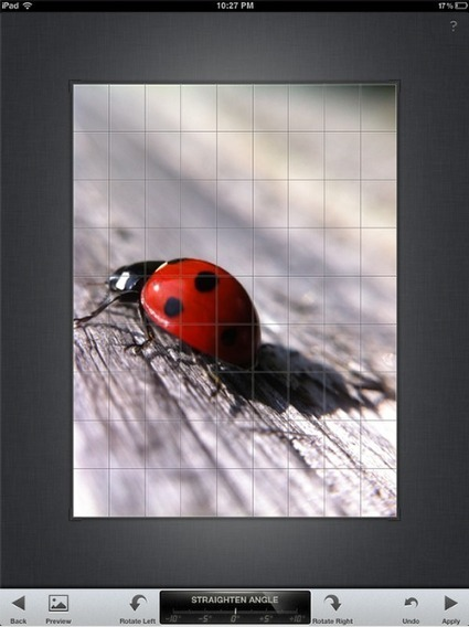 iPhone Photography Tutorial – How To Create An Awesome Macro Ladybird Image | The App Whisperer | How to Use an iPhone Well | Scoop.it