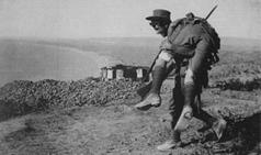 World War I History and Gallipoli Database | Year 9 World War I | Scoop.it
