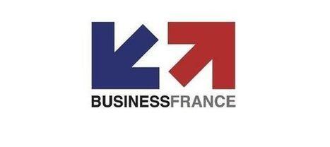 Business France : un nouveau logo pour faire quoi ? | Visual Strategy | Scoop.it