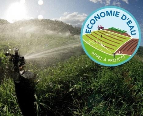 5 M€ pour économiser l'eau en agriculture | Agronomie, élevage, eau et sol - Montpellier SupAgro | Scoop.it