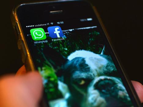 WhatsApp might be about to be banned | Technology in Business Today | Scoop.it
