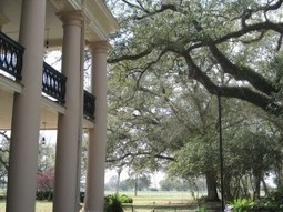 Oak Alley: The Most Photographed Plantation in the World | Oak Alley Plantation: Things to see! | Scoop.it