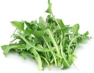 Pissenlit | Jardinage bio | Scoop.it