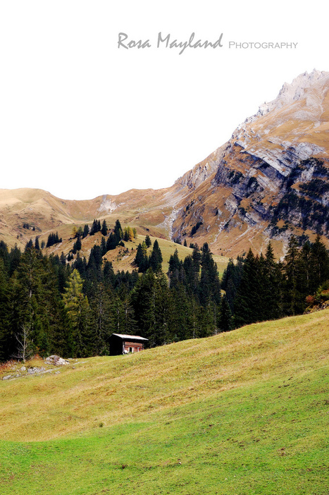 A PHOTOGRAPHIC ESSAY - SIMMENFÄLLE, BERNER OBERLAND (FALL 2012) | interesting news and facts about switzerland | Scoop.it