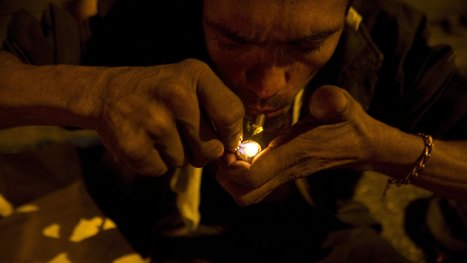 Illicit Drugs And Mental Illness Take A Huge Global Toll | Drug Addiction | Scoop.it