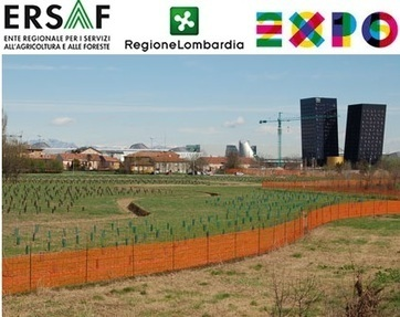 Expo 2015: altri 6 milioni di euro per interventi di compensazione ambientale - Greenreport: economia ecologica e sviluppo sostenibile | Offset your carbon footprint | Scoop.it
