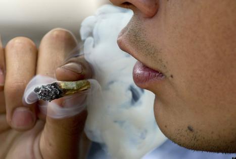 USA: Top 10 Marijuana Victories of 2012 | Cannabis & CoffeeShopNews | Scoop.it