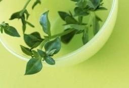 Medicina natural: alimentos que alivian problemas de salud cotidianos | Salud, deporte y bien estar | Scoop.it