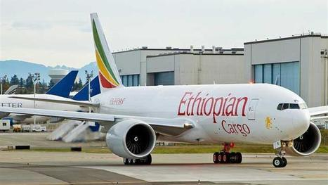Maastricht haalt Ethiopian Cargo binnen | Horticulture Supply Chain | Scoop.it