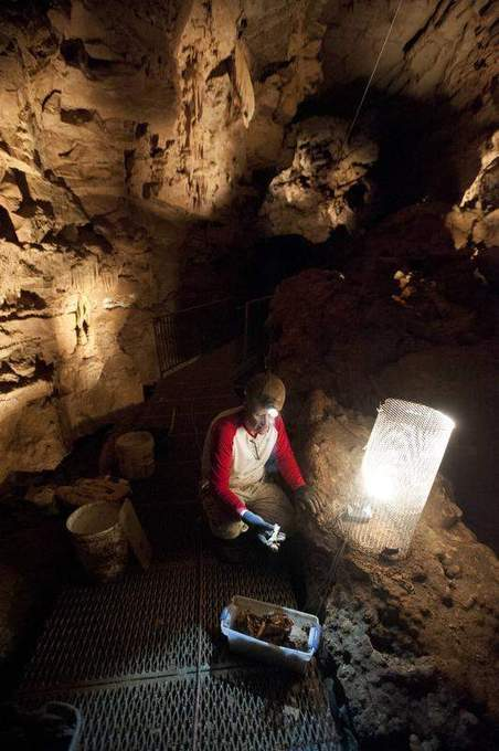 Southern Indiana cave with ice age fossils to open June 15 | This Writer's Life |