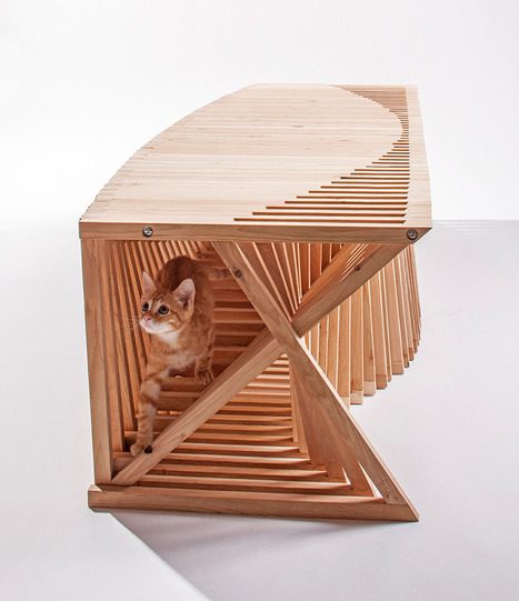 14 Inspiring Custom-Built Modern Cat Houses Revealed at LA Fundraising Event | Visual | Scoop.it